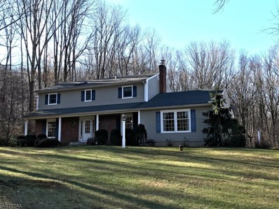 19 Delwood Rd, Chester Twp., NJ 07930 - MLS#: 3493591