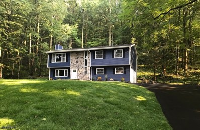 303 Hope Great Meadows Rd, Hope Twp., NJ 07838 - MLS#: 3495327