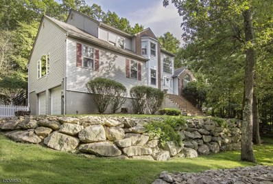 20 Indian Run Rd, Washington Twp., NJ 07853 - MLS#: 3496297