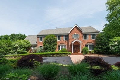 8 Spring Lake Dr, Chester Twp., NJ 07931 - MLS#: 3497374