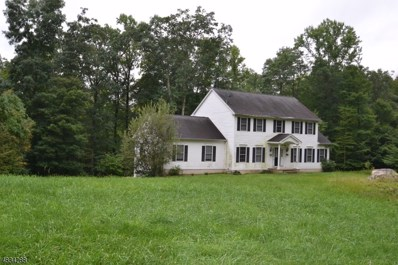320 Andover Sparta Rd, Andover Twp., NJ 07860 - MLS#: 3498579