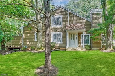 19 Stone Run Rd, Bedminster Twp., NJ 07921 - MLS#: 3499527