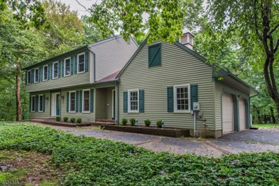 294 Pleasant Grove Rd Fl, Washington Twp., NJ 07853 - MLS#: 3501545