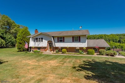 339 Delaware Rd, Hope Twp., NJ 07825 - MLS#: 3503847