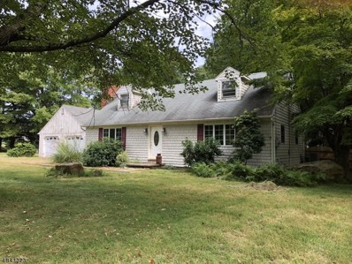 236 Old Turnpike Rd, Tewksbury Twp., NJ 07830 - MLS#: 3505398