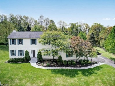 44 Sharrer Rd, Lebanon Twp., NJ 07865 - MLS#: 3505859