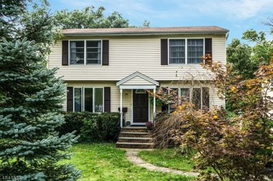 17 Sycamore Ave, Livingston Twp., NJ 07039 - MLS#: 3506051