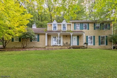 4 Lilac Ln, Lebanon Twp., NJ 07865 - MLS#: 3507432