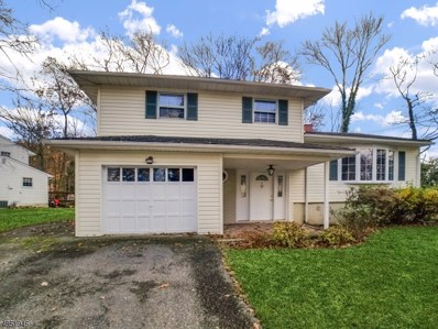 22 Downstream Dr, Mount Olive Twp., NJ 07836 - MLS#: 3515133