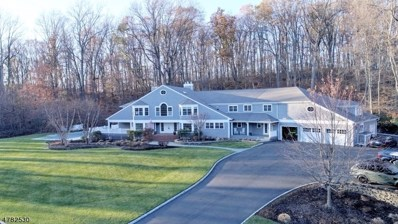 18 Old Wood Ln, Randolph Twp., NJ 07869 - MLS#: 3518905