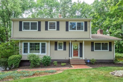 33 Treaty Rd, Randolph Twp., NJ 07869 - MLS#: 3519266