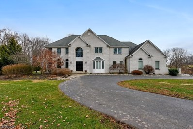 18 Laurelton Trl, Franklin Twp., NJ 08822 - MLS#: 3521600