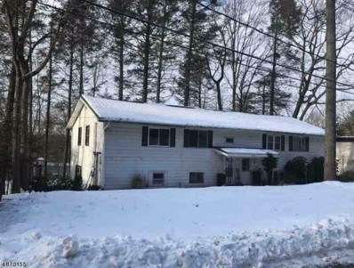 104-B Hemlock Hl, Montague Twp., NJ 07827 - #: 3531434