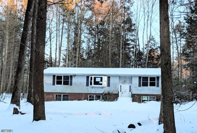 109 Armstrong Rd, Montague Twp., NJ 07827 - #: 3534317