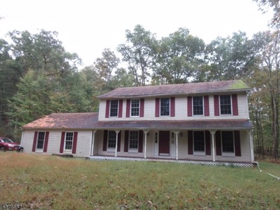 161 New Rd, Montague Twp., NJ 07827 - #: 3537406