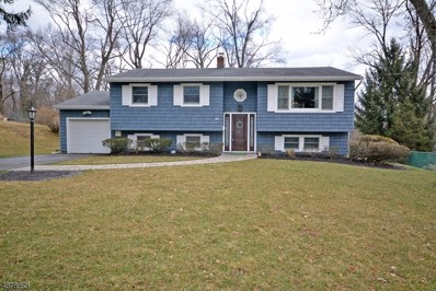 46 Hayward St, Bridgewater Twp., NJ 08805 - MLS#: 3541425