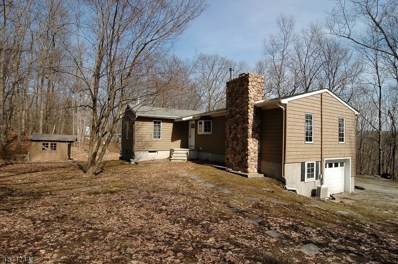 37 Hill Rd, Montague Twp., NJ 07827 - #: 3545712