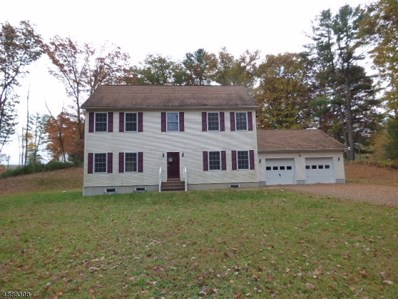 110 North Ct, Montague Twp., NJ 07827 - #: 3546142