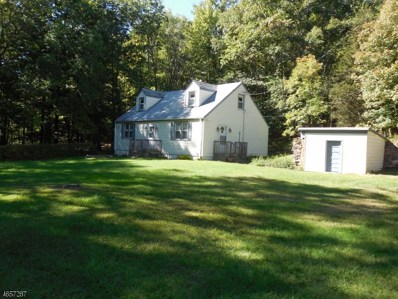 120 Bierskill Rd, Montague Twp., NJ 07827 - #: 3550870