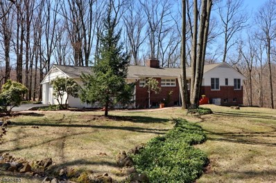 170 W Oakwood Rd, Watchung Boro, NJ 07069 - MLS#: 3551131