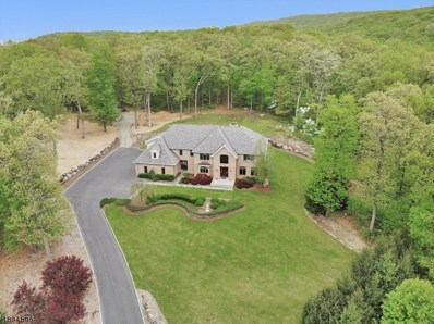 20 Mountainside Dr, Ringwood Boro, NJ 07456 - #: 3556547