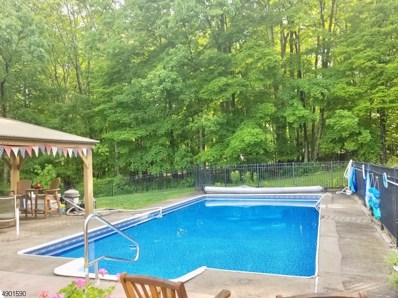 41 Meyers Rd, Sandyston Twp., NJ 07827 - #: 3560600