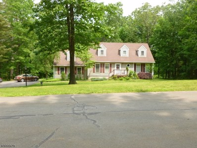 15 Minisink Dr, Montague Twp., NJ 07827 - #: 3564651