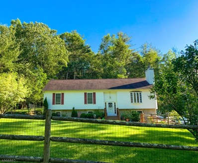 103 Armstrong Rd, Montague Twp., NJ 07827 - #: 3565371