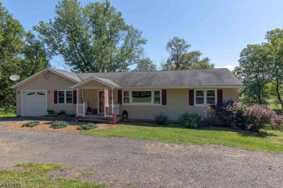 132 County Rt 645, Sandyston Twp., NJ 07826 - #: 3582900