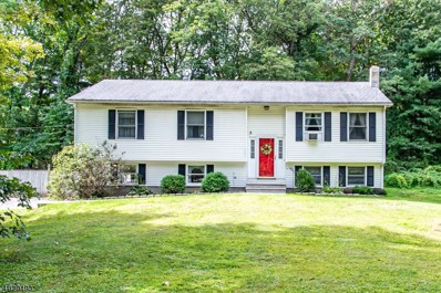 7 Doremus Ln, Montague Twp., NJ 07827 - #: 3586863