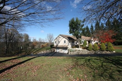 9 Coss Ln, Montague Twp., NJ 07827 - #: 3598932