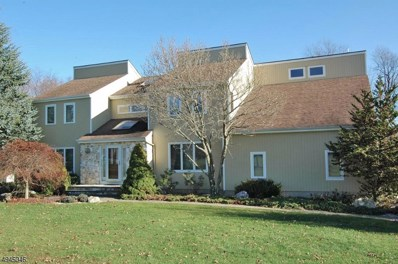 109 Naraticong Trl, Readington Twp., NJ 08889 - MLS#: 3609109