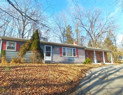 25 Route 521, Hampton Twp., NJ 07860 - MLS#: 3618198