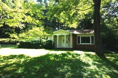 269 Old Chimney Ridge Rd, Montague Twp., NJ 07827 - #: 3662937