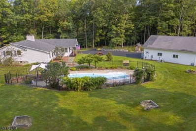 268 New Rd, Montague Twp., NJ 07827 - #: 3663604