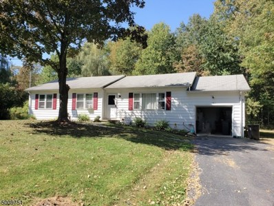 161 Mudtown Rd, Wantage Twp., NJ 07461 - #: 3663914
