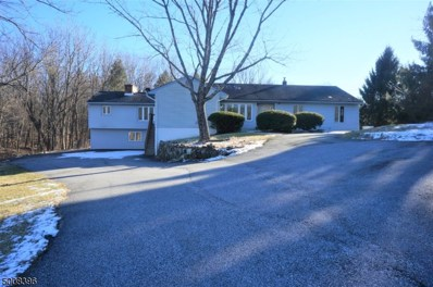 16 Newman Rd, Wantage Twp., NJ 07461 - #: 3687027