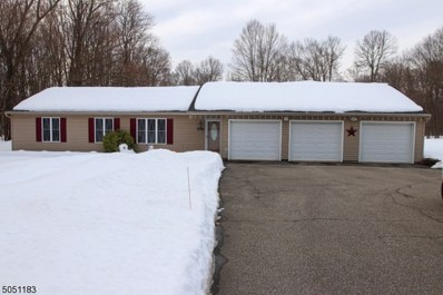 172 New Rd, Montague Twp., NJ 07827 - #: 3694635