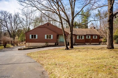 11 Osage Ct, Readington Twp., NJ 08822 - MLS#: 3699466