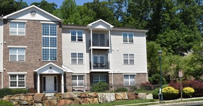 15 Mountainview Ct UNIT 15, Riverdale Boro, NJ 07457 - #: 3721427