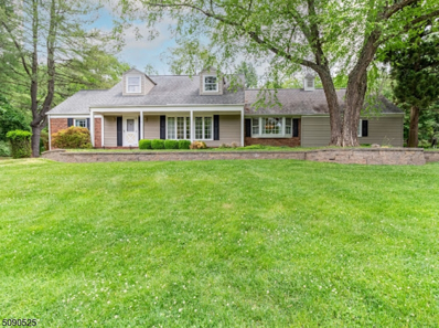 9 Farview Dr, Clinton Twp., NJ 08801 - #: 3729486