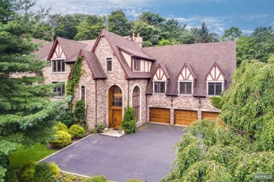 519 HAMPTON HILL Road, Franklin Lakes, NJ 07417 - MLS#: 1731060