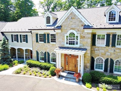 316 SLEEPY HOLLOW Lane, Franklin Lakes, NJ 07417 - MLS#: 1741163