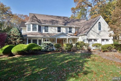 2 GLENBROOK Drive, Park Ridge, NJ 07656 - MLS#: 1744989
