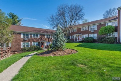 100 PIERSON MILLER Drive UNIT F20, Pompton Lakes, NJ 07442 - MLS#: 1804511
