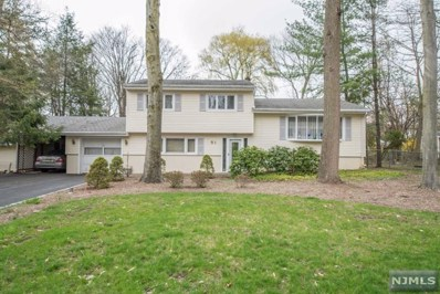 51 CHICASAW Drive, Oakland, NJ 07436 - MLS#: 1808543