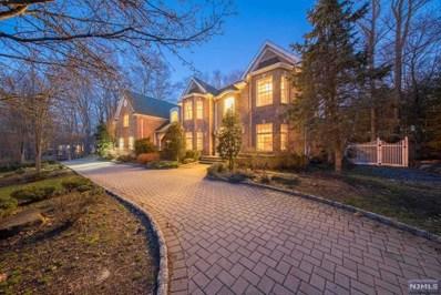 292 HAVEN Road, Franklin Lakes, NJ 07417 - MLS#: 1809876
