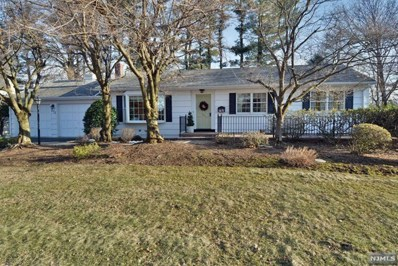 232 KNOLL Drive, Park Ridge, NJ 07656 - MLS#: 1810436