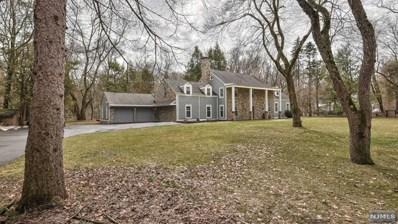 10 OLD BOONTON Road, Denville Township, NJ 07834 - MLS#: 1811895