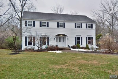 60 PLEASANT Avenue, Upper Saddle River, NJ 07458 - MLS#: 1813033